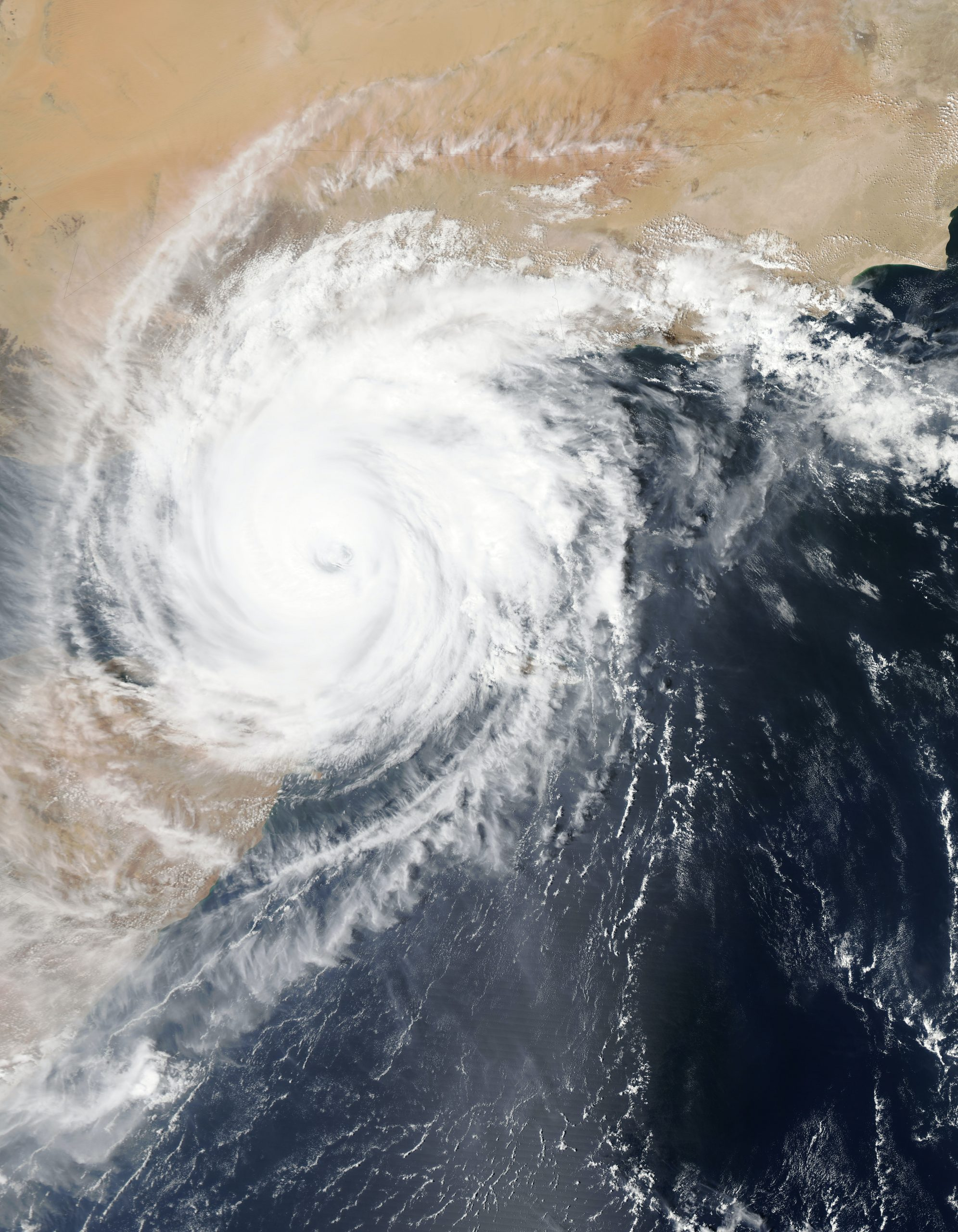 Facing Disasters During COVID-19